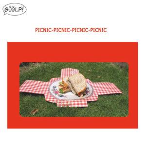 tovagliette-picnic