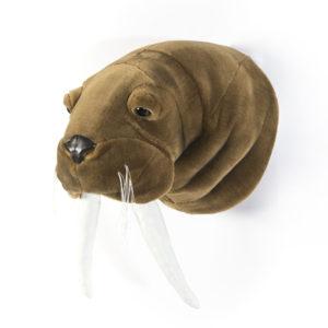 tricheco-walrus-trofeo-di-caccia-peluche