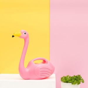 flamingo-innaffiatoio-rosa-goolp