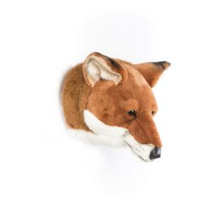 volpe-trofeo-di-caccia-peluche-testa-da-appendere-plush-trophy-fox-bibib-wild-and-soft-goolp