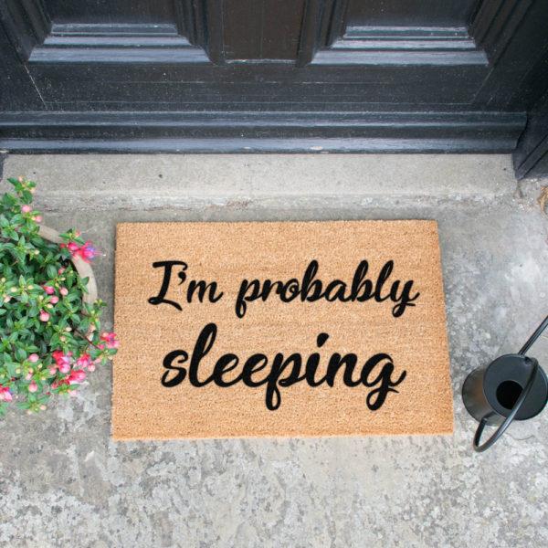 PROBABLY-SLEEPING-ZERBINO